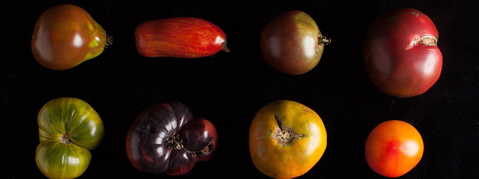 8 heirloom tomatoes.