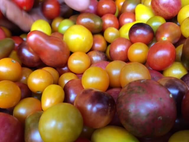 Variety of heirloom tomatoes.