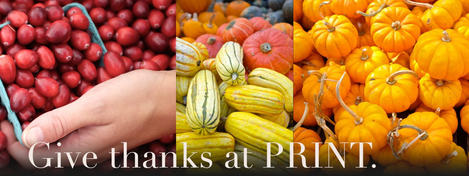 "Composite of winter squashes and cranberries with ""Give Thanks ad PRINT"" superimposed."