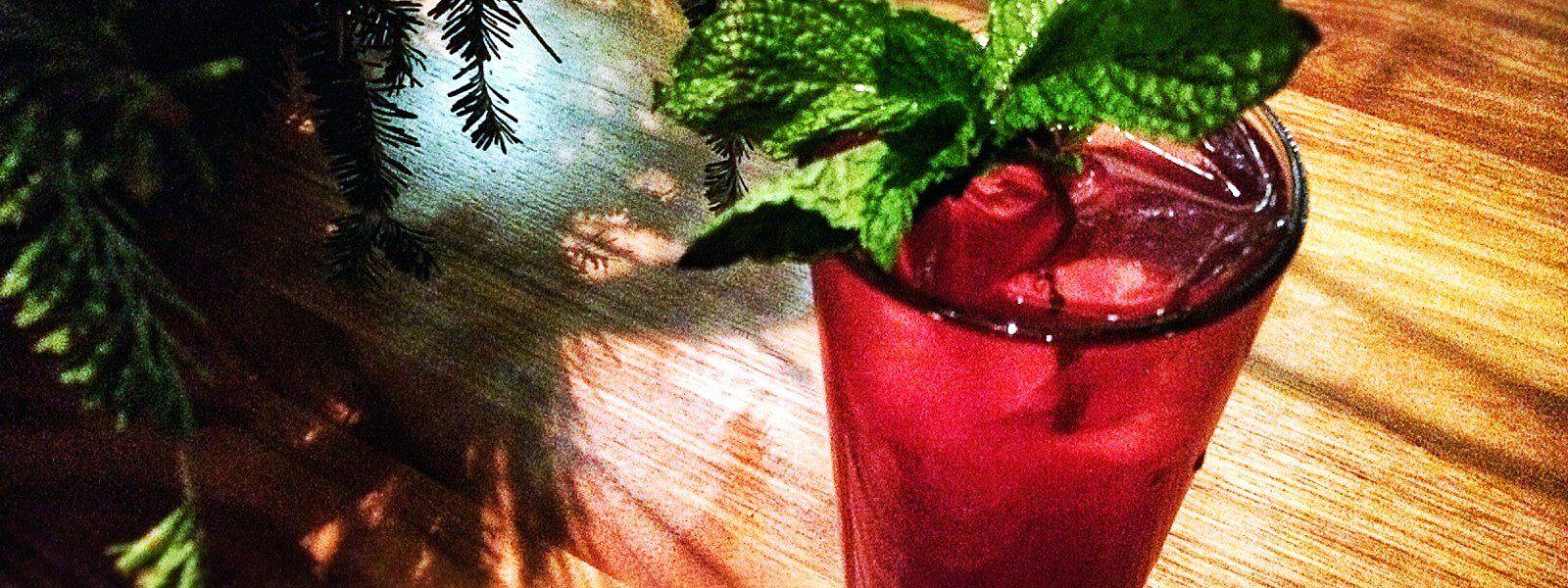 Santa Rose cocktail garnished with mint.