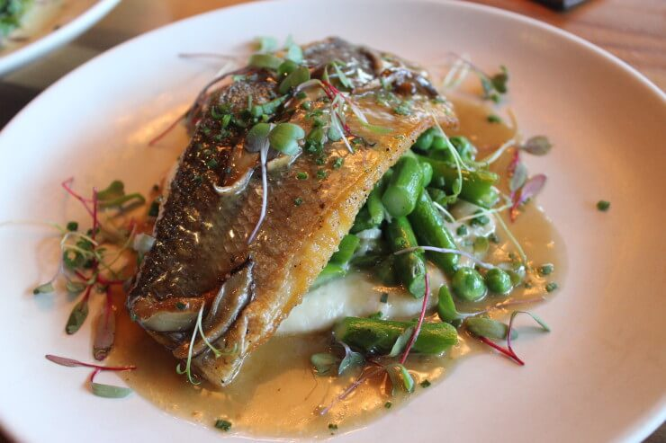 Seared Branzino, Sauté Ramps, Rhubarb, Fiddleheads, Asparagus, Cauliflower Puree, Morels Sauce.