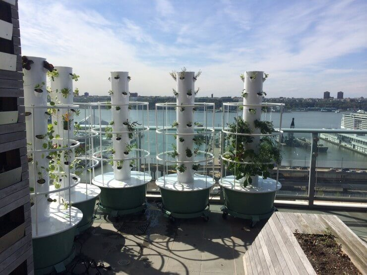 5 towers assembled with plantings.