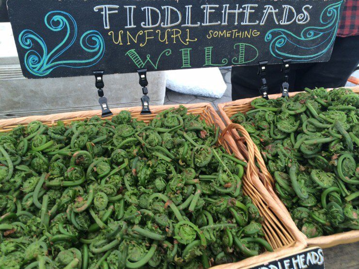 """Fiddleheads in baskets and sign with text: """"Fiddleheads: unfurl something wild."""""""
