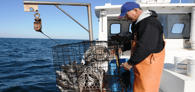 Captain Terry Wallace fishing aboard the F/V Night Moves.
