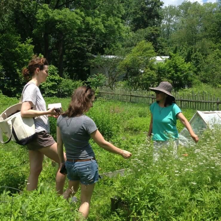 Tama showing her weed garden.