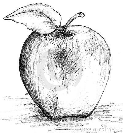 Aaron Burr Cidery logo.