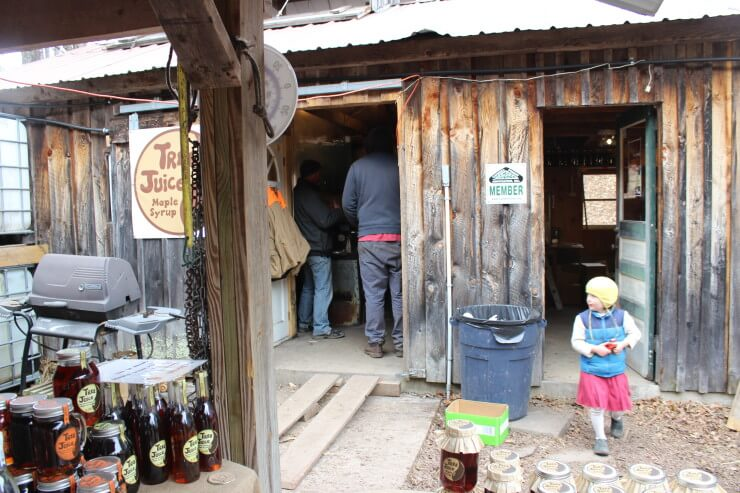 Small child and the sugar shack.