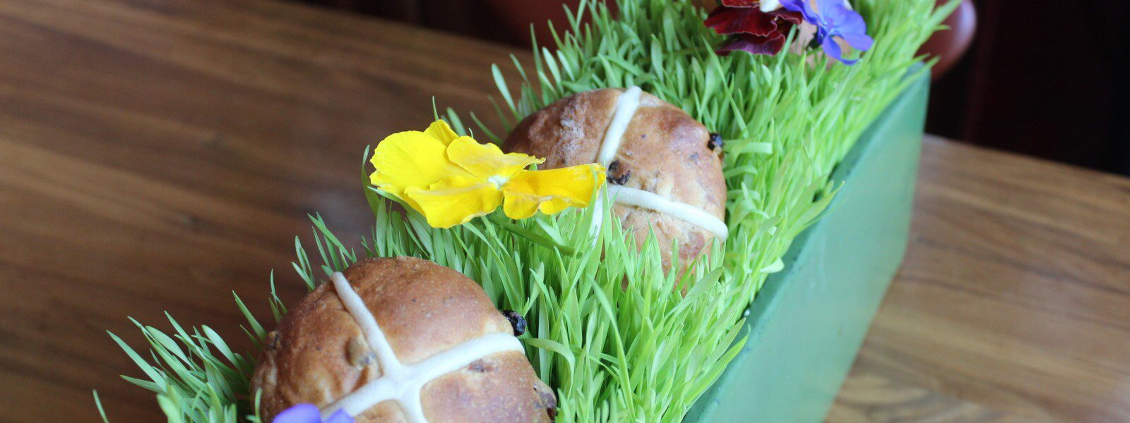 Hot cross buns ne a planter with grass and violets.