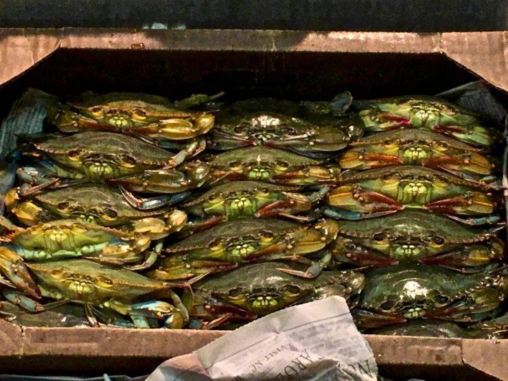 Box of crabs.