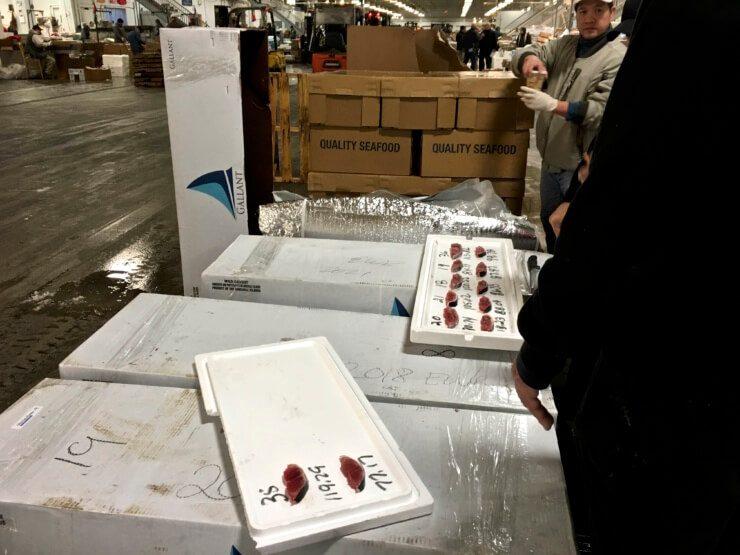 Fish meat samples.