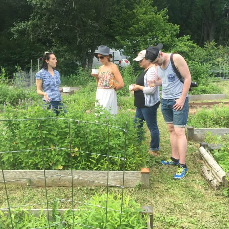 Meadows and More team members and PRINT team discussing the plantings with cups of gazpacho.