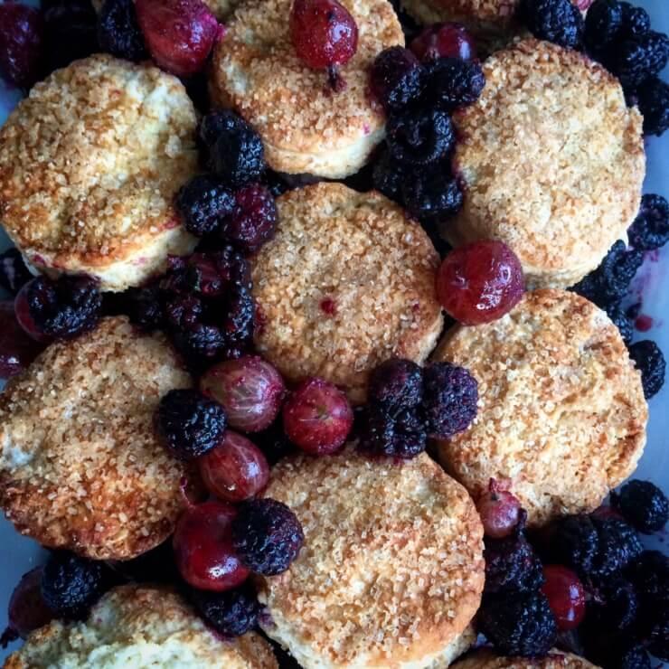 Shortcakes with Black Raspberries, Gooseberries.