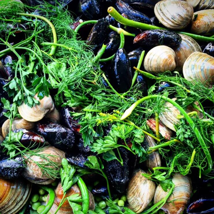 Grilled Mussels and Clams with Garlic Scapes, Dill, Lemon.