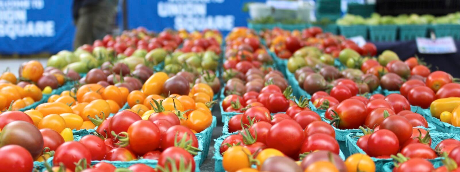 Tomatoes of all colors packed in punnets.