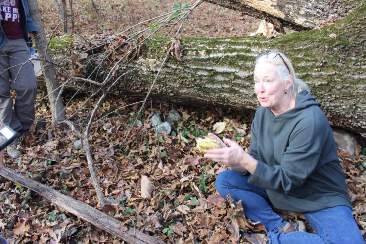 Connie showing a Chicken of the Woods mushroom.