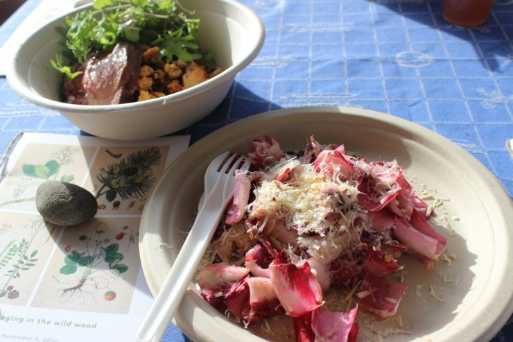 Radicchio salad with black walnuts, wheat berry porridge with hen of the woods mushrooms and fire roasted pork loin.