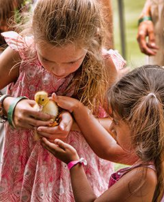 Two girls with a duckling.