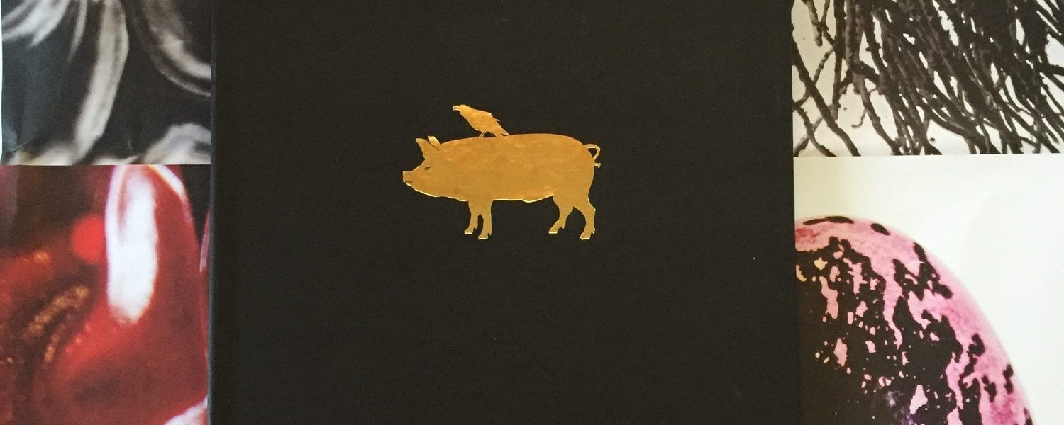 Cover of Hudson Valley Charcuterie book featuring a gold pig.