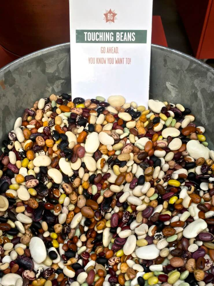 """Bowl of dried beans with sign reading """"Touching beans. Go ahead. You know you want to!""""."""
