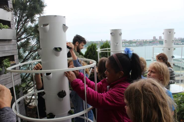 Students looking at the hydroponic planters.
