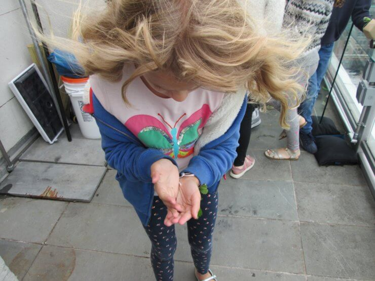 A student holding a worm.