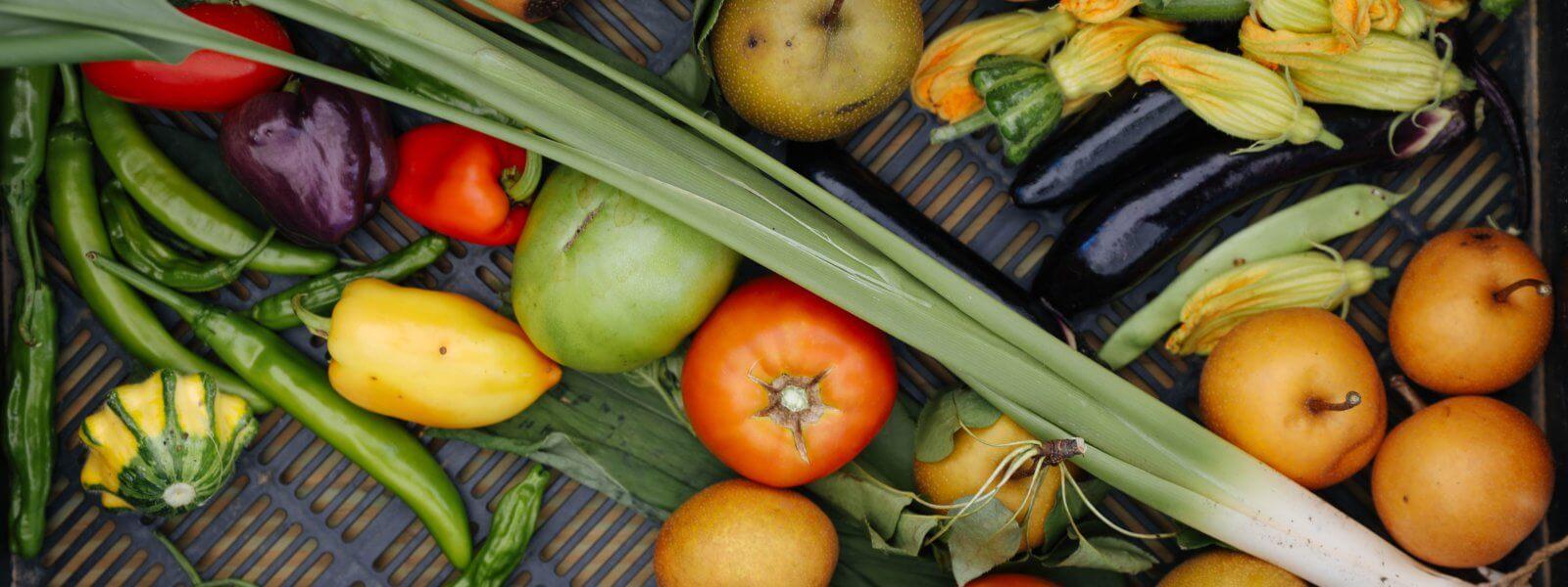 Fall produce.