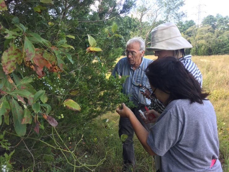 Larry, Meghan, and Tama examining juniper berries.