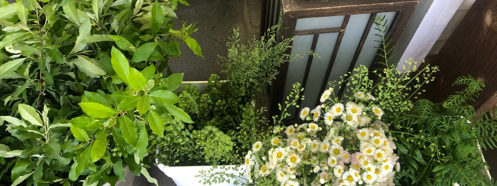 Overhead view of buckets of assorted flowers and greenery.