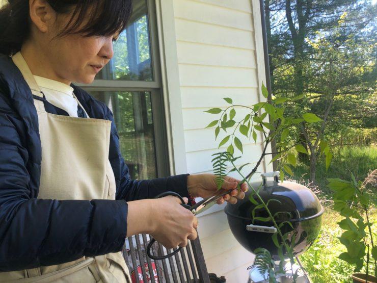 Akiko cutting the stem of a length of greenery.