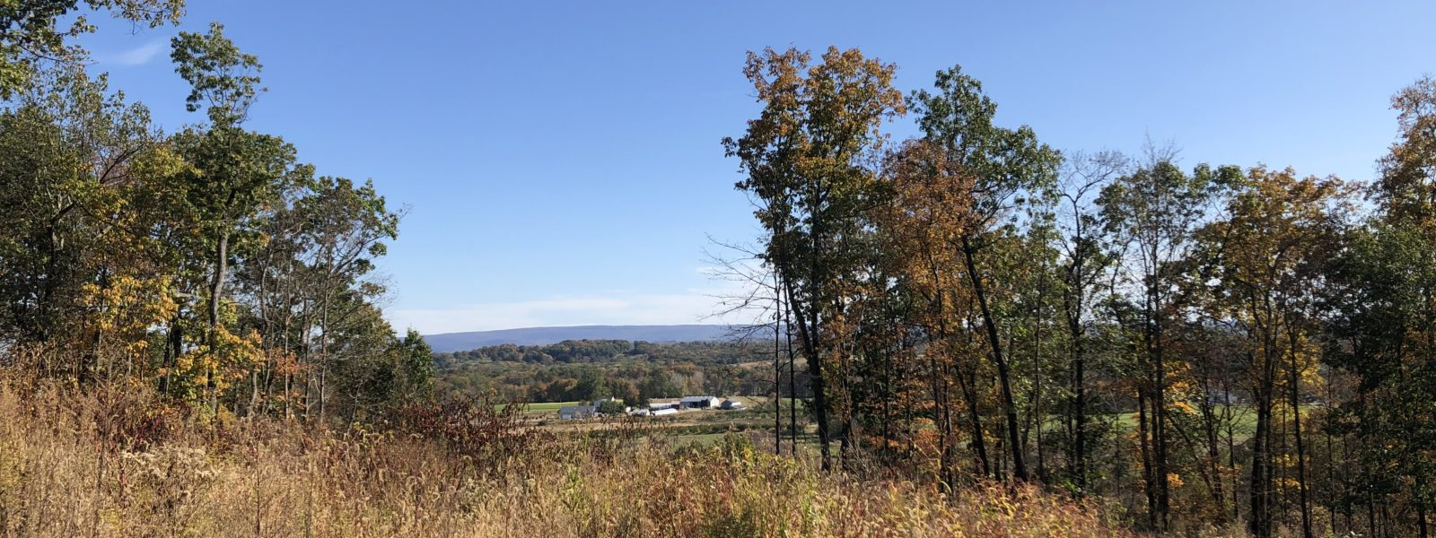 A view of the Hudson Valley and Sycamore Farms.
